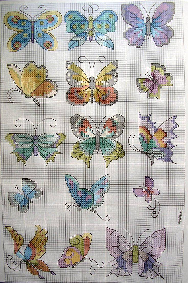 Восхитительные бабочки. Вышивка крестом. Схема